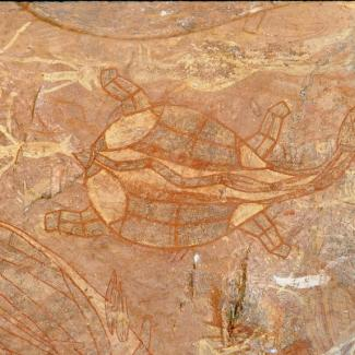 Ancient artwork depicting a tortoise, small portions of other animals can be seen painted around it out of frame.